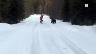 Svenske Ralph (50) brølte – skremte bort bjørnen