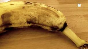 Advarsel: Videoen kan få deg til å frykte bananer for alltid