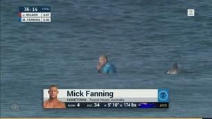 Surfer angrepet av hai midt i konkurranse