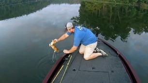 Skulle på fisketur – reddet kattunger fra sjøen