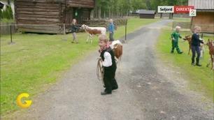 Barna gjør seg klare til dyrsku