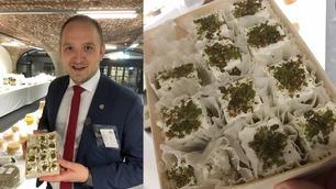 Her får landbruksministeren smake på ost med maur (!)