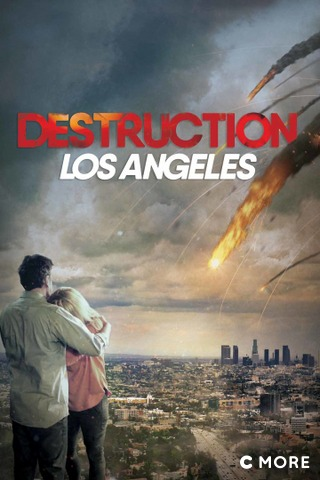 Destruction: Los Angeles