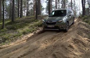 Salget er halvert i Norge - men nå kommer Subaru Forester som hybrid