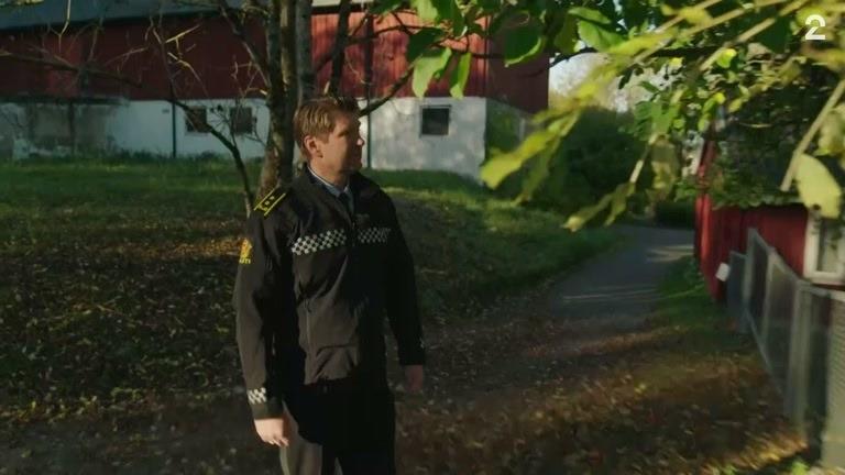 Politiet etterlyser mann i epletre